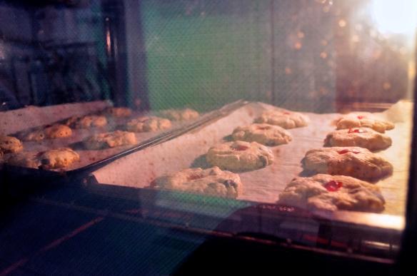 Grandma Cookies_106