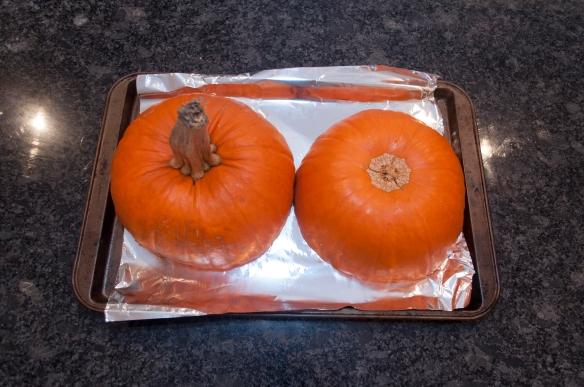pumpkin pie_012