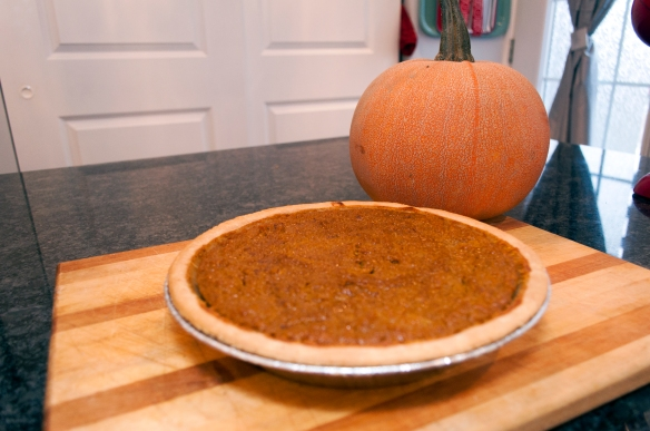pumpkin pie_090